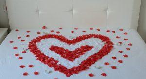 Червени листа от роза